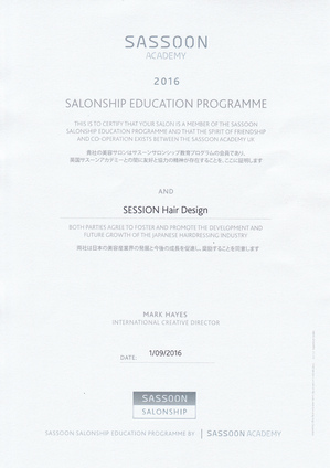 SASSOON SALONSHIP EDUCATION PROGRAMME AND SESSION Hair Design.jpg